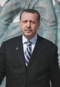 erdogi