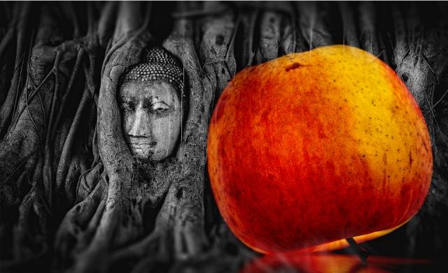 buddha-2937911_960_720